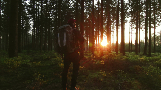 Hiker raising hands by hiking in forest at sunset. hikers enjoying the awesome view at sunset in a beautiful german forest Schwarzwald landscape.  : Stock Photo or Stock Video Download rcfotostock photos, images and assets rcfotostock | RC-Photo-Stock.: