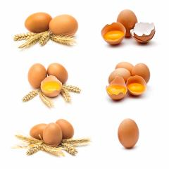 hen eggs set isolated on white  : Stock Photo or Stock Video Download rcfotostock photos, images and assets rcfotostock | RC-Photo-Stock.: