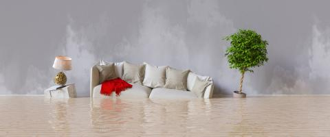 Wasserschaden nach Hochwasser im Haus- Stock Photo or Stock Video of rcfotostock | RC-Photo-Stock