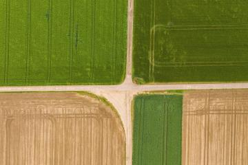 Abstract geometric shapes of agricultural parcels of different crops in yellow and green colors. Aerial view shoot from drone directly above field : Stock Photo or Stock Video Download rcfotostock photos, images and assets rcfotostock | RC-Photo-Stock.: