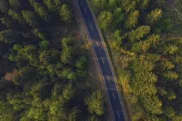 Aerial shot looking down at the tree tops and a road from above- Stock Photo or Stock Video of rcfotostock | RC-Photo-Stock