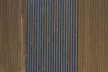 Aerial view, asparagus fields, asparagus covered with black tarpaulin : Stock Photo or Stock Video Download rcfotostock photos, images and assets rcfotostock | RC-Photo-Stock.:
