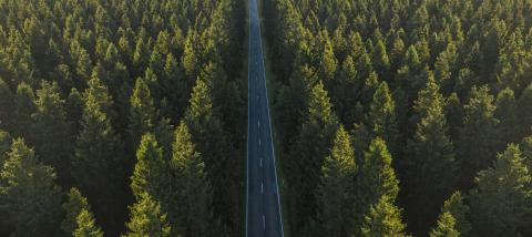 Aerial view from above of country road through the green forest - Stock Photo or Stock Video of rcfotostock | RC-Photo-Stock