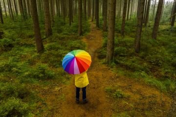 Aerial view of man holding rainbow umbrella in the forest - view from a drone- Stock Photo or Stock Video of rcfotostock | RC-Photo-Stock