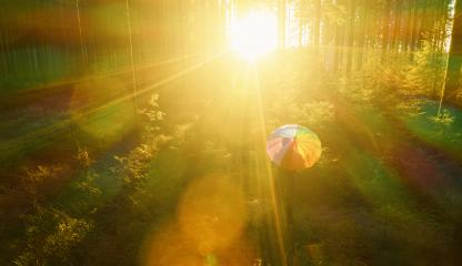 Aerial view of man with rainbow umbrella in the sunlight forest - view from a drone- Stock Photo or Stock Video of rcfotostock | RC-Photo-Stock