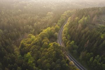 Aerial View of Road to the Mountains with mist, Top view of road through the trees shooting from drone- Stock Photo or Stock Video of rcfotostock | RC-Photo-Stock