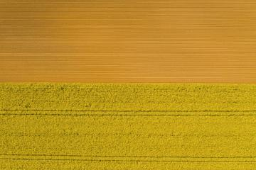 Aerial view of rows of soil before planting Canola. Furrows row pattern in a plowed field prepared for planting crops in spring. Drone shot view- Stock Photo or Stock Video of rcfotostock | RC-Photo-Stock