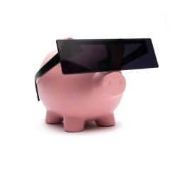 anonymous Piggy bank with glasses - Corruption concept- Stock Photo or Stock Video of rcfotostock | RC-Photo-Stock