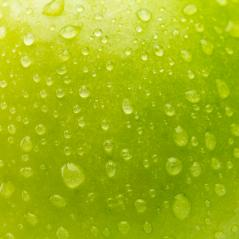 apple with dew drops texture- Stock Photo or Stock Video of rcfotostock | RC-Photo-Stock