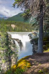 Athabasca Falls in Jasper National Park on the Icefield Parkway in Alberta, Canada. A Class 5 waterfall, it is the most powerful waterfall in the Canadian Rockies. : Stock Photo or Stock Video Download rcfotostock photos, images and assets rcfotostock | RC-Photo-Stock.: