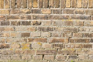 Background of old vintage brick wall- Stock Photo or Stock Video of rcfotostock   RC-Photo-Stock