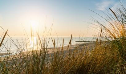 Baltic sea over sand dunes with ocean view, sunset summer evening- Stock Photo or Stock Video of rcfotostock | RC-Photo-Stock
