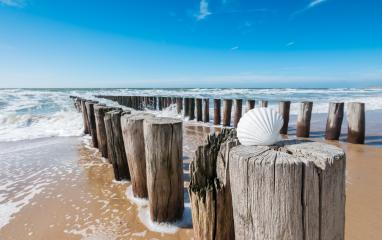 Beach holidays at the sea : Stock Photo or Stock Video Download rcfotostock photos, images and assets rcfotostock | RC-Photo-Stock.: