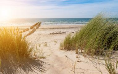 beach view from the dunes- Stock Photo or Stock Video of rcfotostock | RC-Photo-Stock