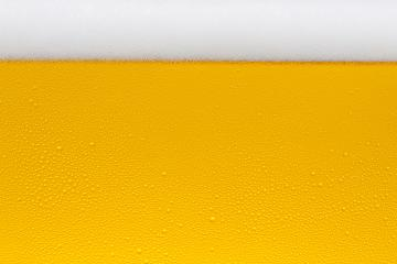 Beer foam crown with golden drops of condensation : Stock Photo or Stock Video Download rcfotostock photos, images and assets rcfotostock | RC-Photo-Stock.: