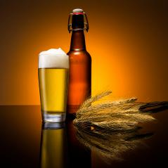 beer glass with bottle and corn- Stock Photo or Stock Video of rcfotostock   RC-Photo-Stock