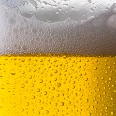 beer glass with dew drops- Stock Photo or Stock Video of rcfotostock | RC-Photo-Stock