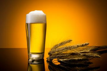 beer in a glass with corn ears- Stock Photo or Stock Video of rcfotostock | RC-Photo-Stock