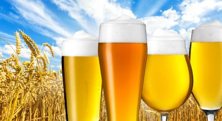 beer varieties in summer- Stock Photo or Stock Video of rcfotostock | RC-Photo-Stock