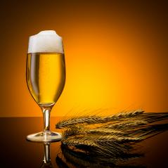 beer with corn- Stock Photo or Stock Video of rcfotostock | RC-Photo-Stock