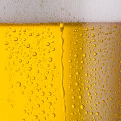 beer with drops of condensation- Stock Photo or Stock Video of rcfotostock | RC-Photo-Stock