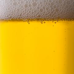 beer with froth- Stock Photo or Stock Video of rcfotostock | RC-Photo-Stock