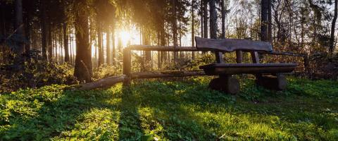 bench on a hiking trail at sunset : Stock Photo or Stock Video Download rcfotostock photos, images and assets rcfotostock | RC-Photo-Stock.: