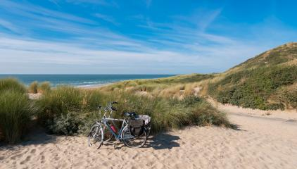 Bicycle tour at the North Sea dunes in Renesse, Netherlands- Stock Photo or Stock Video of rcfotostock | RC-Photo-Stock