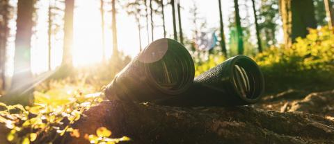 Binoculars At The forest On A Bright Sunny Day. Wanderlust Journey Concept- Stock Photo or Stock Video of rcfotostock | RC-Photo-Stock
