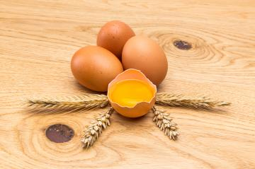 bio eggs with cereals- Stock Photo or Stock Video of rcfotostock | RC-Photo-Stock
