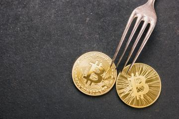 bitcoin (BTC) and Bitcoin Cash (BCH) Hard Fork, golden cryptocurrency concept image : Stock Photo or Stock Video Download rcfotostock photos, images and assets rcfotostock | RC-Photo-Stock.: