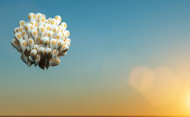 Bitcoin with balloons- Stock Photo or Stock Video of rcfotostock | RC-Photo-Stock