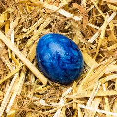 blue easter egg in straw- Stock Photo or Stock Video of rcfotostock | RC-Photo-Stock