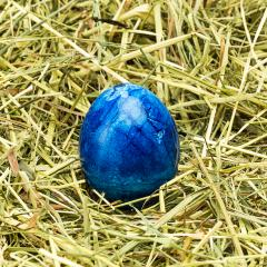 blue easter egg lies in hay- Stock Photo or Stock Video of rcfotostock | RC-Photo-Stock