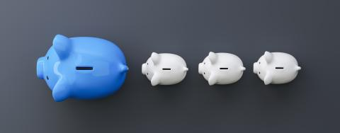 blue piggy bank as row leader, investment and development concept- Stock Photo or Stock Video of rcfotostock | RC-Photo-Stock