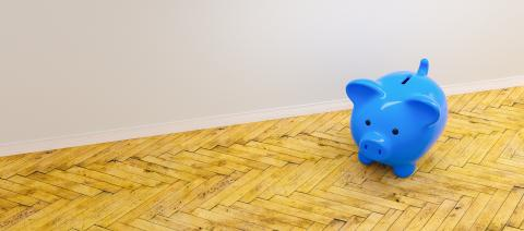 blue Piggy Bank, Savings, Currency, investment and development concept image  - Stock Photo or Stock Video of rcfotostock | RC-Photo-Stock