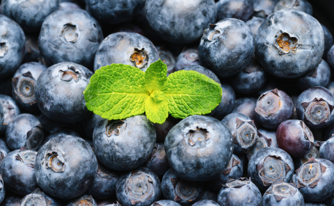 blueberries with mint leaf background or backdrop. Vegan and vegetarian concept. Macro texture of blueberry berries. Summer healthy food. - Stock Photo or Stock Video of rcfotostock | RC-Photo-Stock