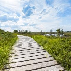 boardwalk in bog veen landscape with cloud sky : Stock Photo or Stock Video Download rcfotostock photos, images and assets rcfotostock | RC-Photo-Stock.: