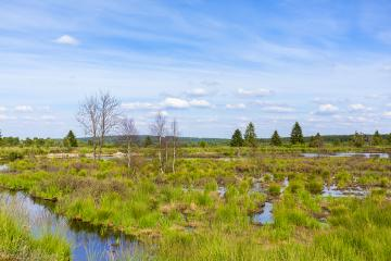 Bog lake in Belgium Veen with cloudy sky : Stock Photo or Stock Video Download rcfotostock photos, images and assets rcfotostock | RC-Photo-Stock.: