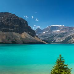 Bow Lake at Rocky Mountains in canada - Stock Photo or Stock Video of rcfotostock | RC-Photo-Stock