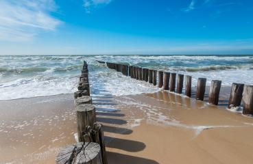 Breakwater of two rows of wooden poles at the Dutch North Sea coast - Stock Photo or Stock Video of rcfotostock | RC-Photo-Stock