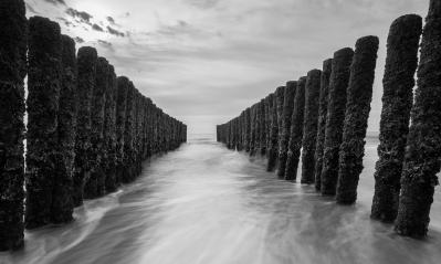 breakwaters at the baltic sea in black and white colors- Stock Photo or Stock Video of rcfotostock | RC-Photo-Stock