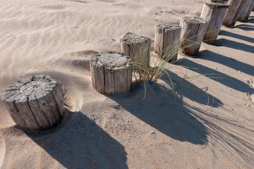 breakwaters poles on the beach at the north sea in Domburg, Zeeland, Holland- Stock Photo or Stock Video of rcfotostock | RC-Photo-Stock