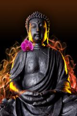 Buddha statue with glow and orchid against black background : Stock Photo or Stock Video Download rcfotostock photos, images and assets rcfotostock | RC-Photo-Stock.: