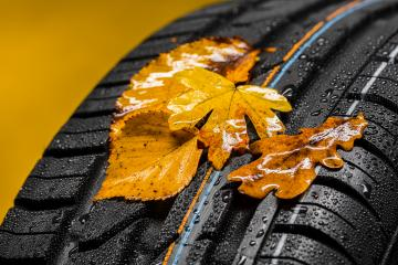Canadian car car tires with autumn leafs and raindrops  : Stock Photo or Stock Video Download rcfotostock photos, images and assets rcfotostock | RC-Photo-Stock.: