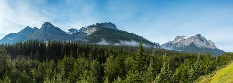 Canadian Rocky mountains panorama in the jasper national park canada  : Stock Photo or Stock Video Download rcfotostock photos, images and assets rcfotostock | RC-Photo-Stock.: