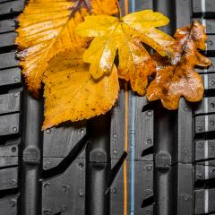 Car tire with autumn leaves car service station : Stock Photo or Stock Video Download rcfotostock photos, images and assets rcfotostock | RC-Photo-Stock.: