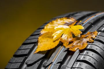 car tire with autumn leaves on brown background : Stock Photo or Stock Video Download rcfotostock photos, images and assets rcfotostock | RC-Photo-Stock.: