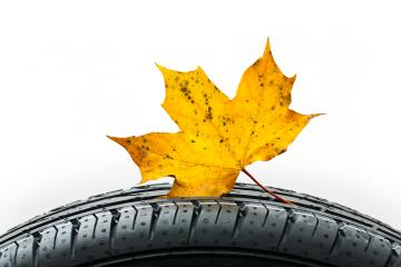 Car tire with maple leaf in autumn : Stock Photo or Stock Video Download rcfotostock photos, images and assets rcfotostock | RC-Photo-Stock.: