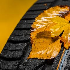 car tire with moist autumn leaves and raindrops : Stock Photo or Stock Video Download rcfotostock photos, images and assets rcfotostock | RC-Photo-Stock.:
